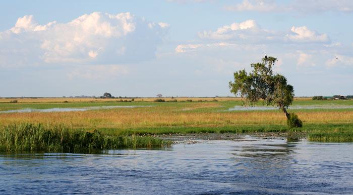 River Zambesi Tour